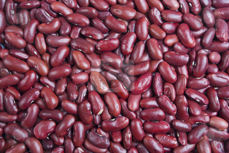 Kidney Beans stock photo, A texture of many Kidney Beans by Steve Smith