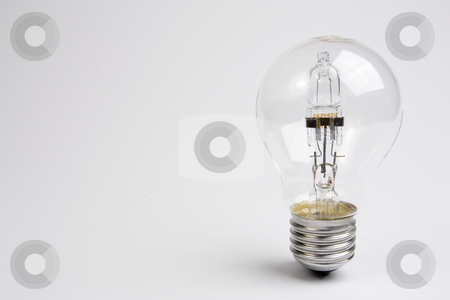 Halogen Lightbulb stock photo, A halogen lightbulb standing on the right-hand side of a white frame. by Steve Smith