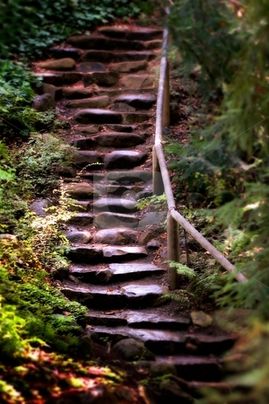 Old Wet Stone Steps stock photo, Old wet stone steps in a forest by Henrik Lehnerer