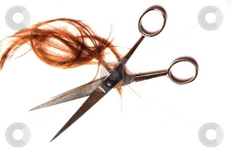 Cutting Hair stock photo, Scissors and hair by Lars Kastilan