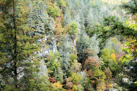 Side of the mountan stock photo, The side of the mountain in the early fall. From the Linville Gorge area of North Carolina. by Tim Markley