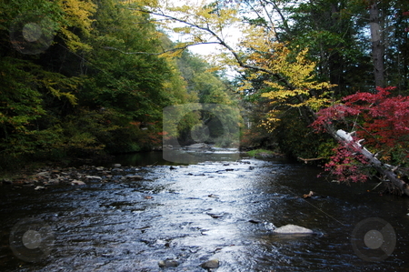 North carolina creek stock photo, A creek in rural North Carolina seen during the early fall by Tim Markley