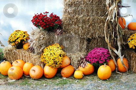 Fall of the year stock photo, Fall of the year in rural North Carolina by Tim Markley