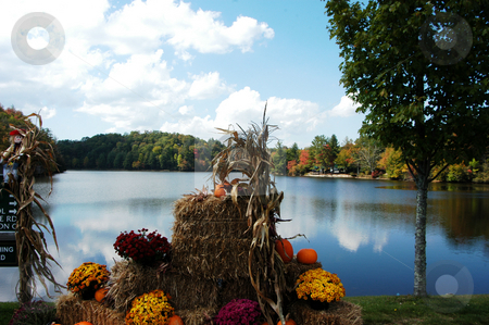 Fall scence stock photo, A fall scene along a lake in rural North Carolina by Tim Markley