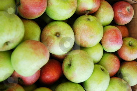 Basket of apples stock photo, A basket of apples for sale at the farmers market by Tim Markley