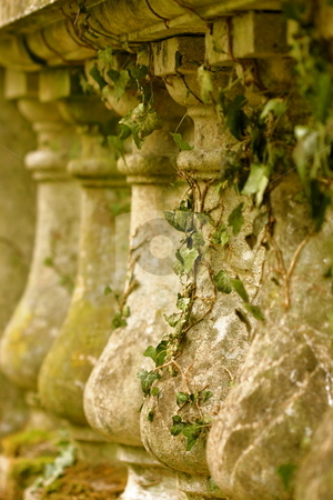 Bridge Column and Ivy  stock photo, An old bridge with ivy growing on the columns by Jeff Crowe