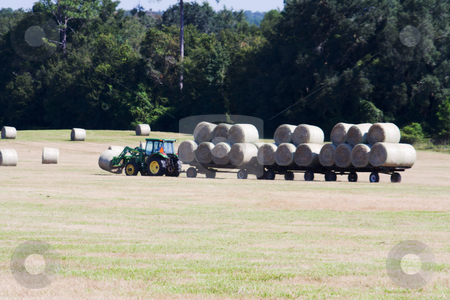 Hay harvest stock photo, Harvesting of round hay bales in a farmers field by Lee Barnwell