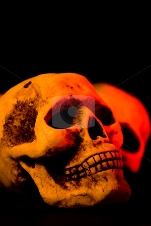 Scary Halloween stock photo, Skull series of pictures for Halloween season by Jose Wilson Araujo