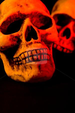 Scary Halloween stock photo, Skull series of pictures for Halloween season by Jose Wilson Araujo