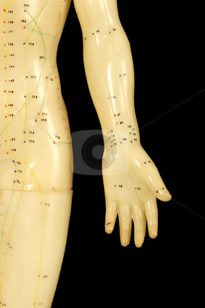 Acupuncture points stock photo, Acupuncture points on hand isolated on black background by Mark Yuill