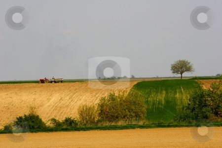 Farmland stock photo, Rural landscape by Mark Yuill