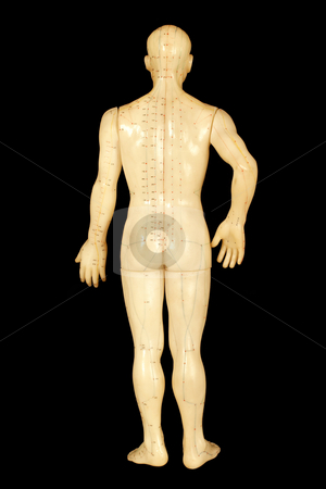 Acupuncture points stock photo, Acupuncture points on human back isolated on black background by Mark Yuill