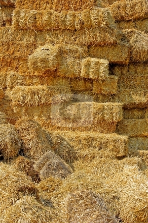 Hay stack stock photo, Straw haystack by Mark Yuill