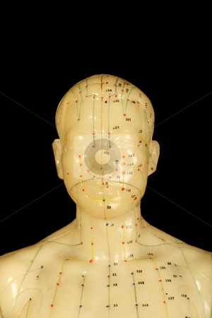 Acupuncture points stock photo, Acupuncture points on head isolated on black background by Mark Yuill