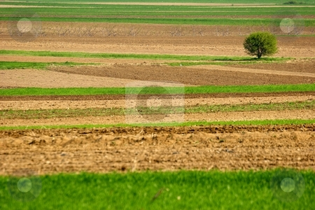 Farmland stock photo, Rural landscape of a farm by Mark Yuill