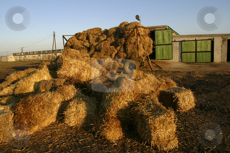 Straw bales stock photo, Straw bales in farmyard by Mark Yuill