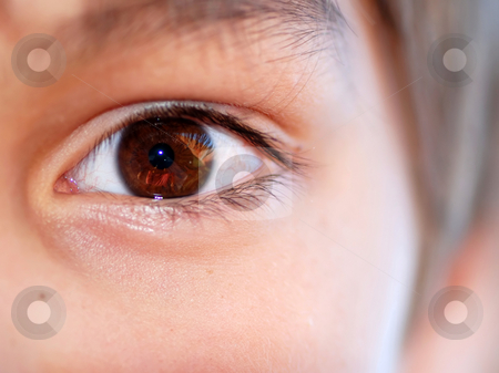 Brown eye crop stock photo, Human brown opened beautiful eye close up by Julija Sapic