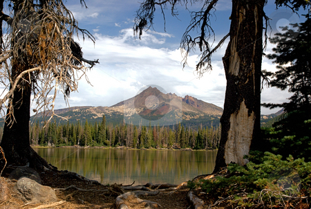 Mountain stock photo, Mountain landscape framed between two trees by Harold Johnson
