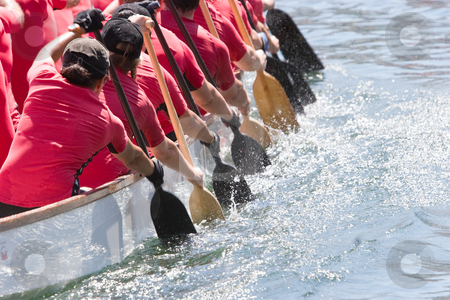 Dragon boat stock photo, Dragon boat racers paddling by Nicholas Rjabow