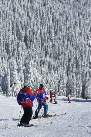 Sikers on slope stock photo, Skiers on piste by Mark Yuill