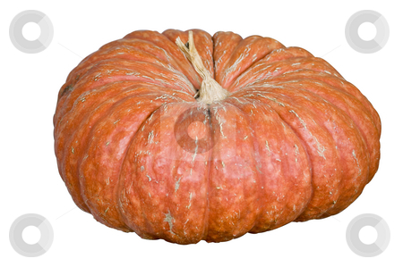 Strange pumpkin stock photo, A gourd shaped similar to a pumpkin. isolated with a clipping path by RCarner Photography