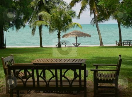 A Place to Sit stock photo, Picnic tables sit on a lawn by a white sandy beach and azure sea. Bang Saray, Chon Buri Province, Thailand. by Martin Darley