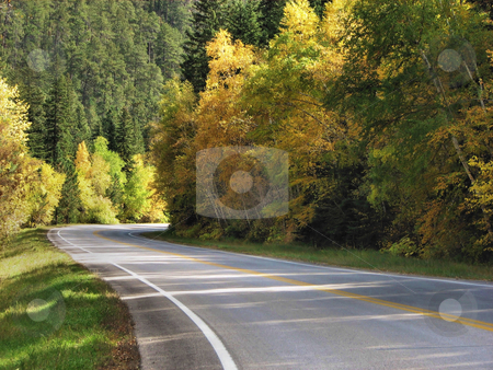 Highway Of Gold - Spearfish Canyon stock photo, Taken In Spearfish Canyon In South Dakota by Brian Meyer