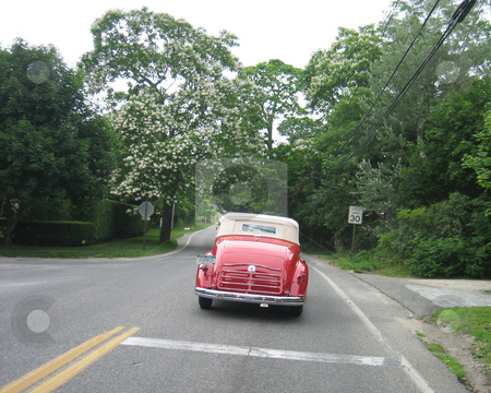 Little red car Hamptons country road stock photo, Little red convertible on Hamptons NY country road by Tom Falco