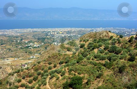 Aspromonte stock photo, View on Reggio Calabria agains Messina strait from Aspromonte with typical olive-trees by Natalia Macheda