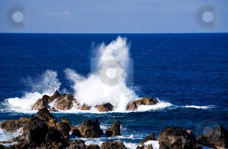 Madeira coast  stock photo, View of Madeira coast by Vitaly Sokolovskiy