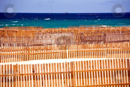 Wooden fence on deserted beach dunes  stock photo, Wooden fence on deserted beach dunes in Tarifa, Spain by Vitaly Sokolovskiy
