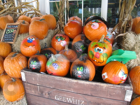 Pumpkins for sale at market stock photo, Pumpkins for sale at market, Miami, Florida by Tom Falco