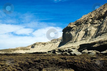 Cliff at the edge of the sea, Patagonia Argentina. stock photo, Cliff at the edge of the sea, Puerto Piramides, Peninsula Valdes, Patagonia Argentina. by Pablo Caridad