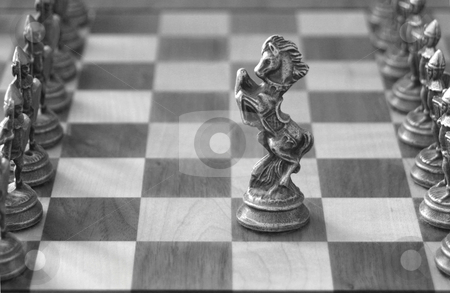 Your Move stock photo, A knight, in the middle of the chess board, advances to meet the opposition. by Great Divide Photography