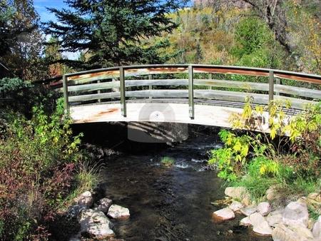 Little Stream Under Bridge - Spearfish Canyon stock photo, Tken In Spearfish Canyon In South Dakota by Brian Meyer