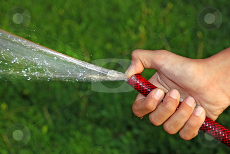 Watering grass stock photo, Child hand keeping water hose over green grass by Julija Sapic