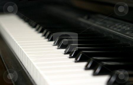 Piano stock photo, Black and white piano keyboard from an angle. by Henrik Lehnerer