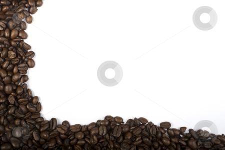 Coffee Border stock photo, A border of espresso coffee beans on the left and bottom of a white frame. by Steve Smith