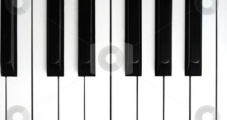 Piano Keys stock photo, Isolation of Piano Keys by Will Burwell