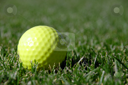 Golf ball stock photo,  by Brian Shephard
