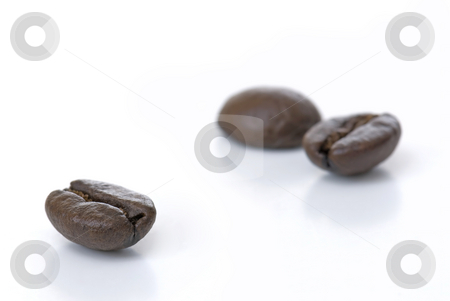 Coffee Beans stock photo, Coffee Beans on a White Isolated Background by Brian Shephard