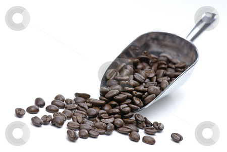 Coffee Beans stock photo, Coffee Beans and Large Scoop Isolated on a White Background by Brian Shephard