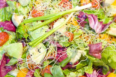Freshly prepared salads stock photo, Delicious freshly prepared salads in a serving bowl. by Nicolaas Traut