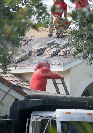 Roofers stock photo, Group of Roofers at work on a house by Robert Cabrera