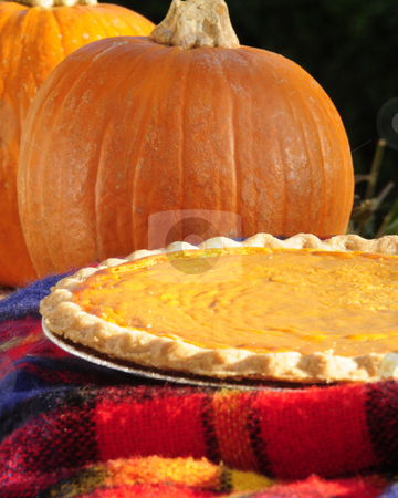 Pumpkin and Pie stock photo, Pumpin pie in the aftrnoon by Timothy OLeary