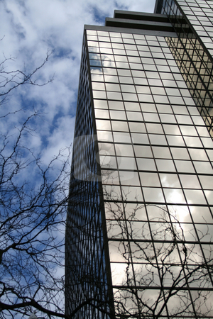 Glass Building stock photo, Glass building reflecting tree branches and sky by Julie Bentz