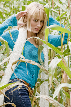Atractive cornfield girl stock photo, Young beauty blond woman in a cornfield by Frenk and Danielle Kaufmann