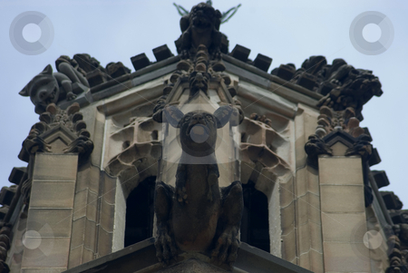 Kangaroo gargoyle stock photo, Gargoyles stones on the side of the historic sydney university by Stephen Gibson