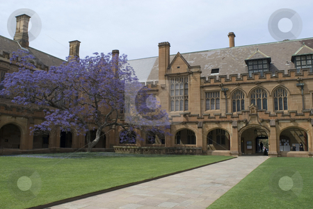 Sydney University Quadrangle stock photo, Gothic revival architecture at sydney university, australia by Stephen Gibson