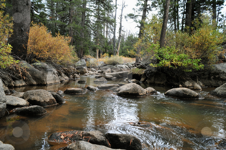 Autumn Mountain Stream stock photo, Fall arrives to a mountain stream in Alpine Coubty California. by Lynn Bendickson